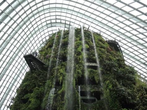 Im Cloud Forest herrschten angenehme 25 Grad, mehr als 10 Grad kühler als draußen
