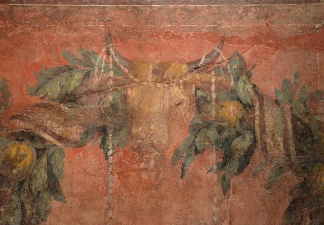 Detail of fresco wall painting with garland of fruits, leaves and sacrificial bull's head (bucrania), from the exedra of the Villa of P. Fannius Synistor at Boscoreale, 40–30 BC Empire of colour - From Pompeii to Southern Gaul, Musée Saint-Raymond Toulouse On loan from Musée de Picardie, Amiens, France Carole Raddato CC BY-SA