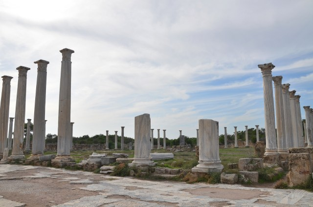 The Gymnasium with its columned palaestra, Salamis
