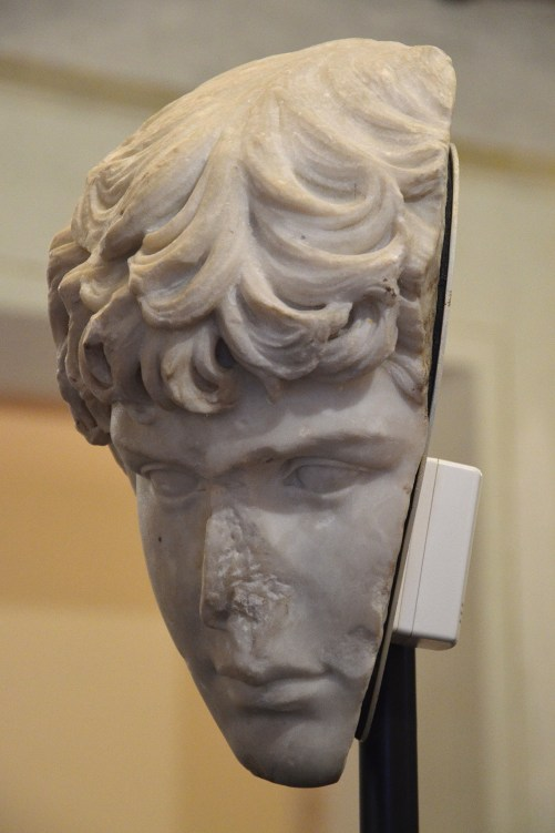 Fragment of a portrait head of Antinous, Art Institute of Chicago