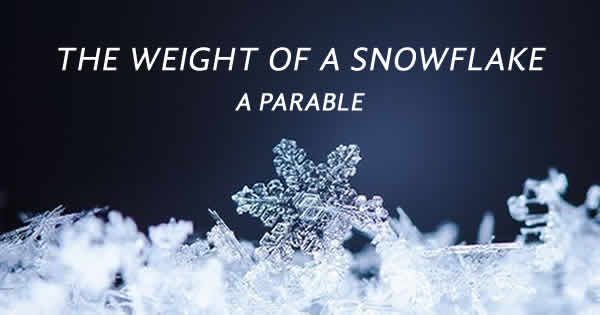 The weight of a snowflake: a parable