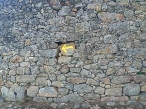 Camino Portuguese-414