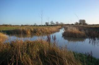 Thames Path-107