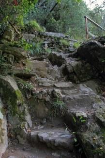 The path from Monterosso Al Mare to Vernazza
