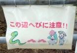 'Kono hen hebi ni chu-ii' - warning there are snakes in this area. (hiragana and kanji)