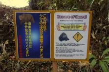 Beware of bears!