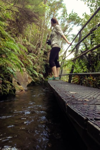 Naomi VanDoren Travel New Zealand day 3-23
