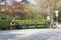 Old man chilling on bench.