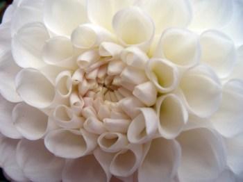 Immagine tratta dal sito web: www.torange-it.com