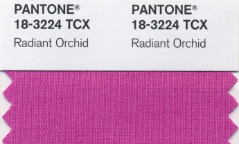 pink-radiant-orchid-color-of-2014