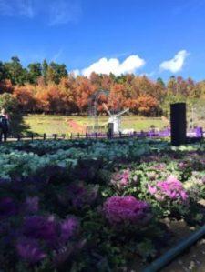 清境農場小瑞士花園