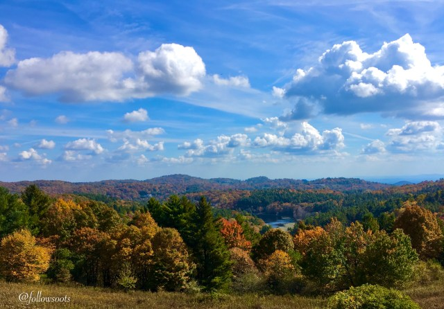Gorgeous fall colors at Moses H Cone Memorial Park