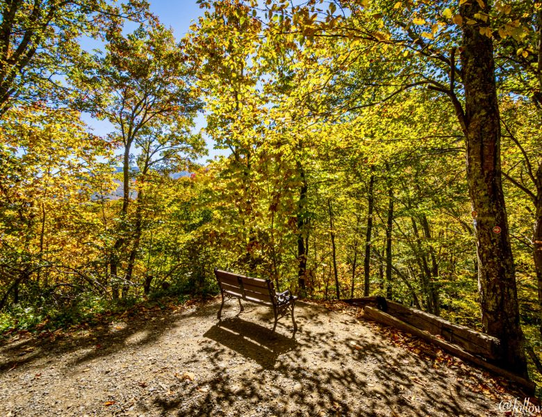 Fall Colors to Warm Your Heart – Fall Photography
