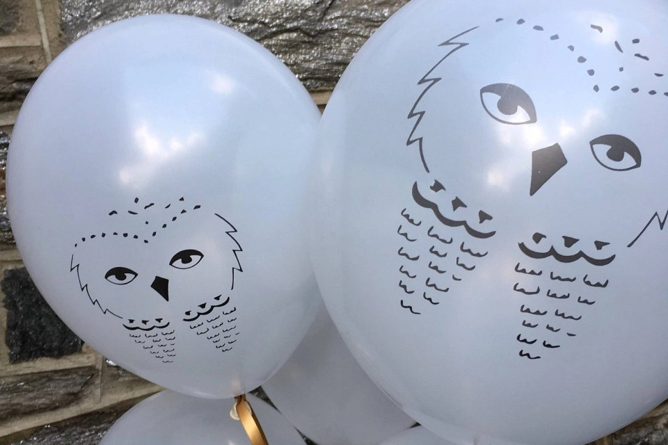 Harry Potter 11th Birthday Party - Hedwig Balloons