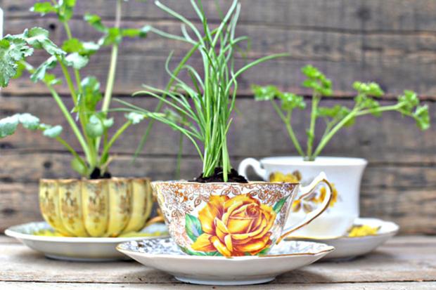 follow-the-colours-mini-horta-cozinha-caneca-01