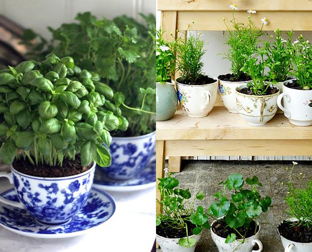 follow-the-colours-mini-horta-cozinha-caneca-03