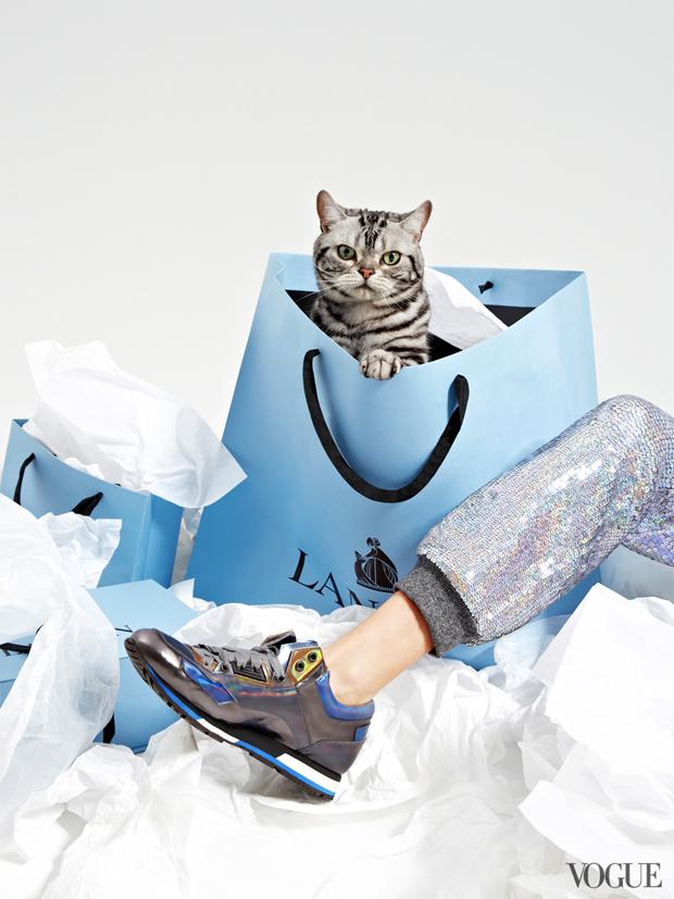 gatinhos-e-sapatos-vogue-13