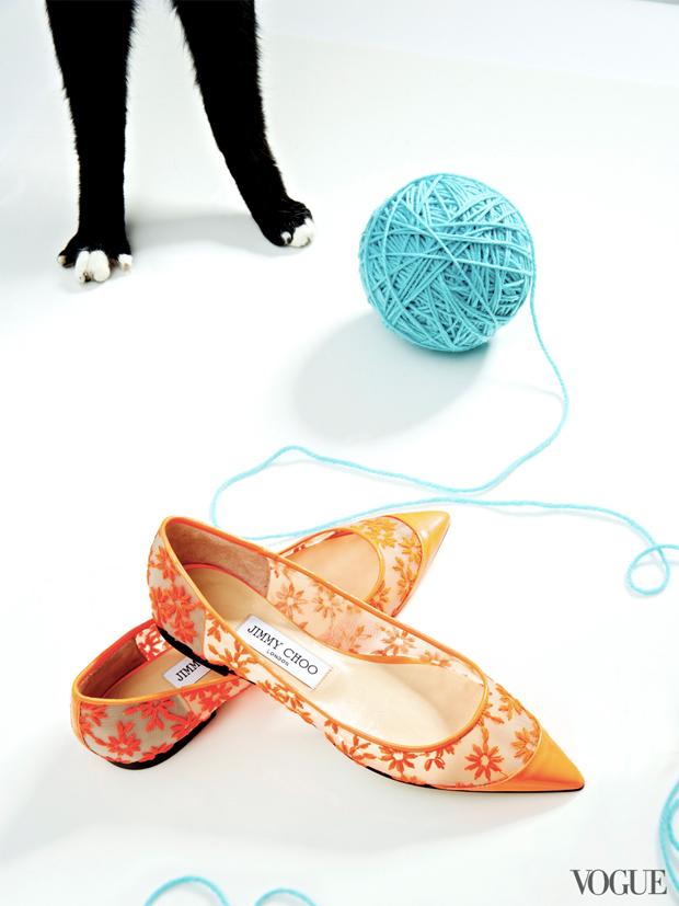gatinhos-e-sapatos-vogue-15