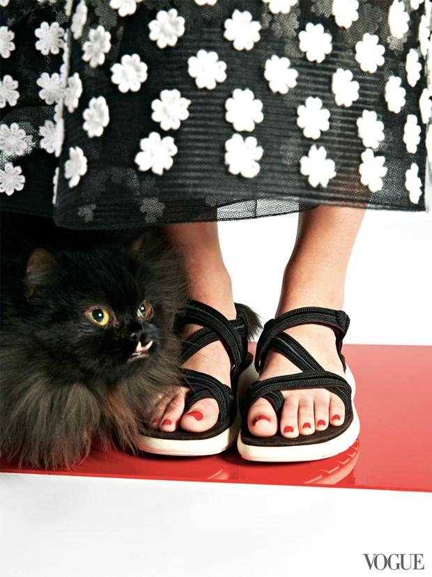 gatinhos-e-sapatos-vogue-16