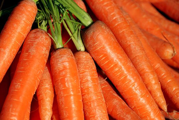 Laranja cores curiosidades cenouras