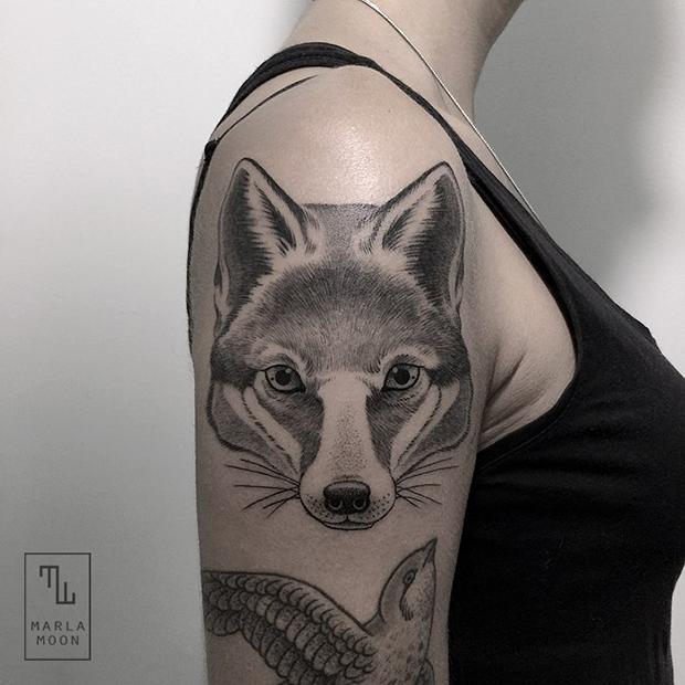 tattoo tatuagens linhas finas marla moon raposa