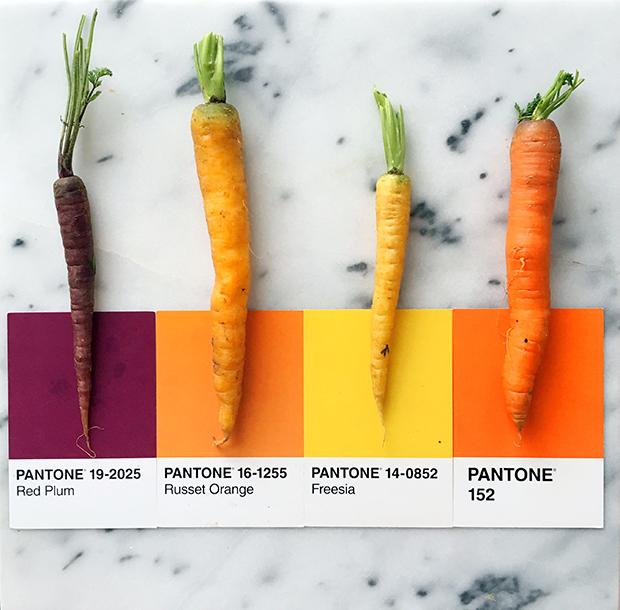 follow-the-colours-pantone-posts-lucy-Litman-06