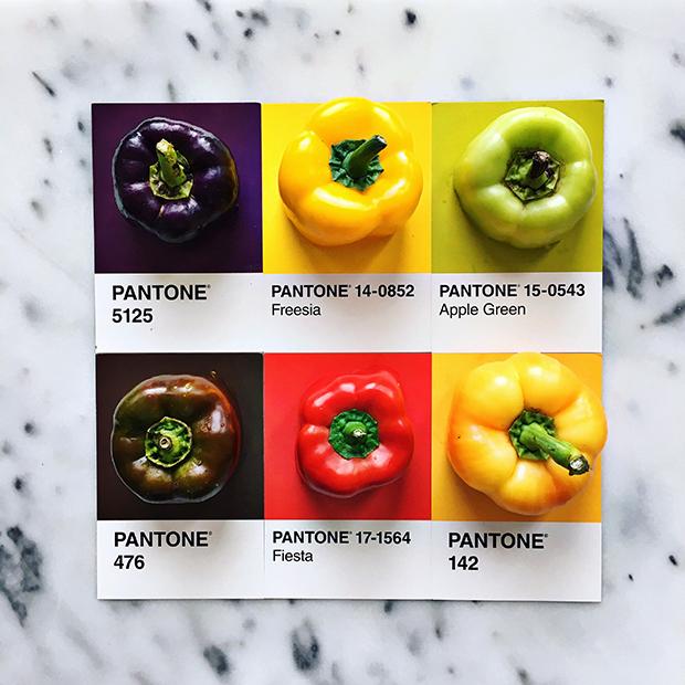 follow-the-colours-pantone-posts-lucy-Litman-08