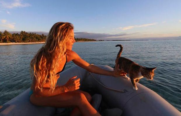 follow-the-colours-gato-barco-viagem-Liz Clark-15