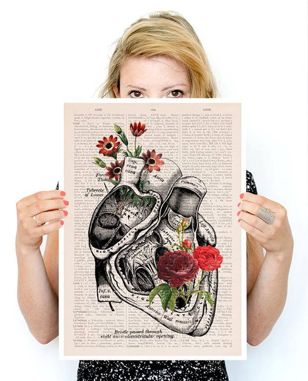 ftc-dicionarios-ilustracoes-florais-prrint-02