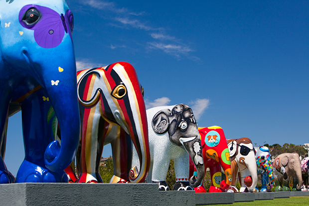 ftc-scott-sporleder-elephant-parade-scott-sporleder-03