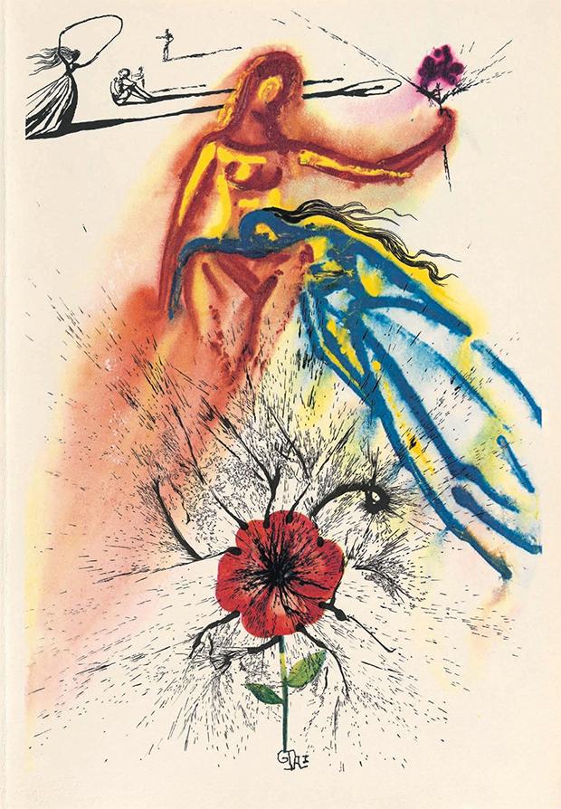 Edicao De Alice No Pais Das Maravilhas Com Ilustracoes Ineditas De