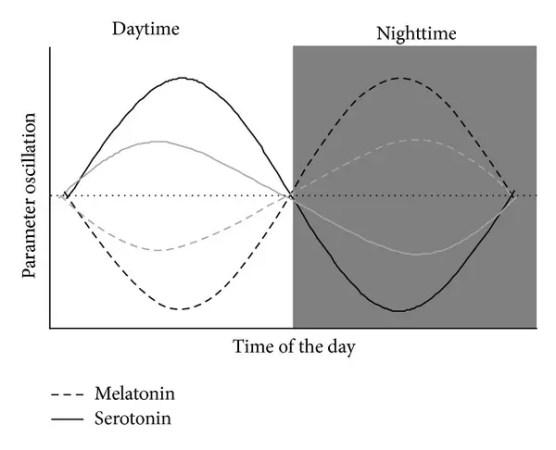 Circadian-rhythms-of-melatonin-and-serotonin-Black-lines-represent-normal-circadian