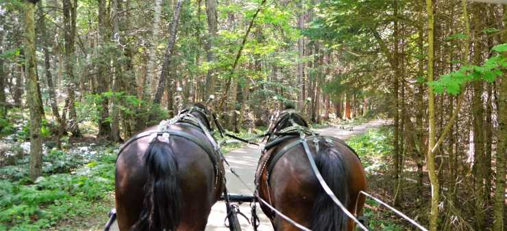 Carriage Tour on Mackinac Island