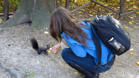 Feeding a squirrel in Tivoli park, Ljubljana