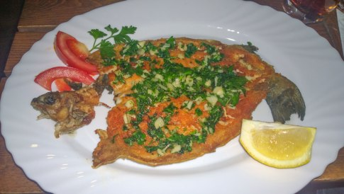 Complex Kosovo Houses, trout fish menu