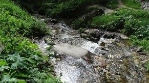 River-under-the-wonderful-bridges