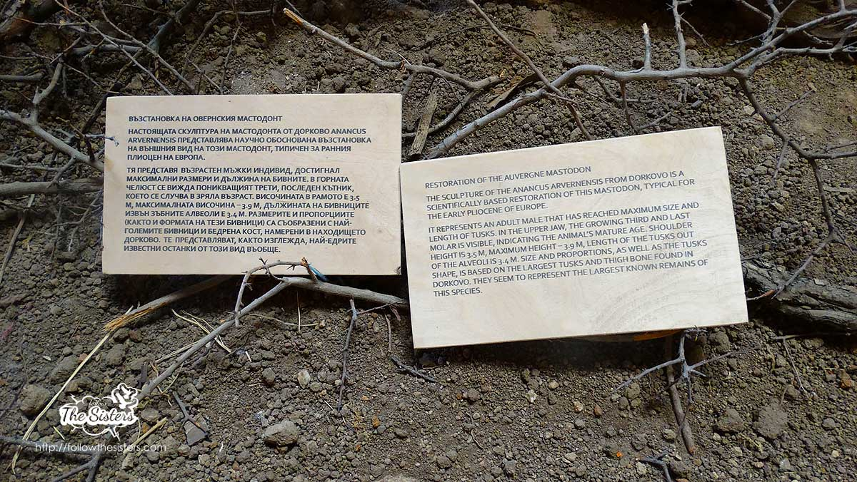 Information about the mammoth in Dorkovo