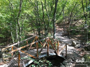 Little wooden bridges on the way to ring in Sliven