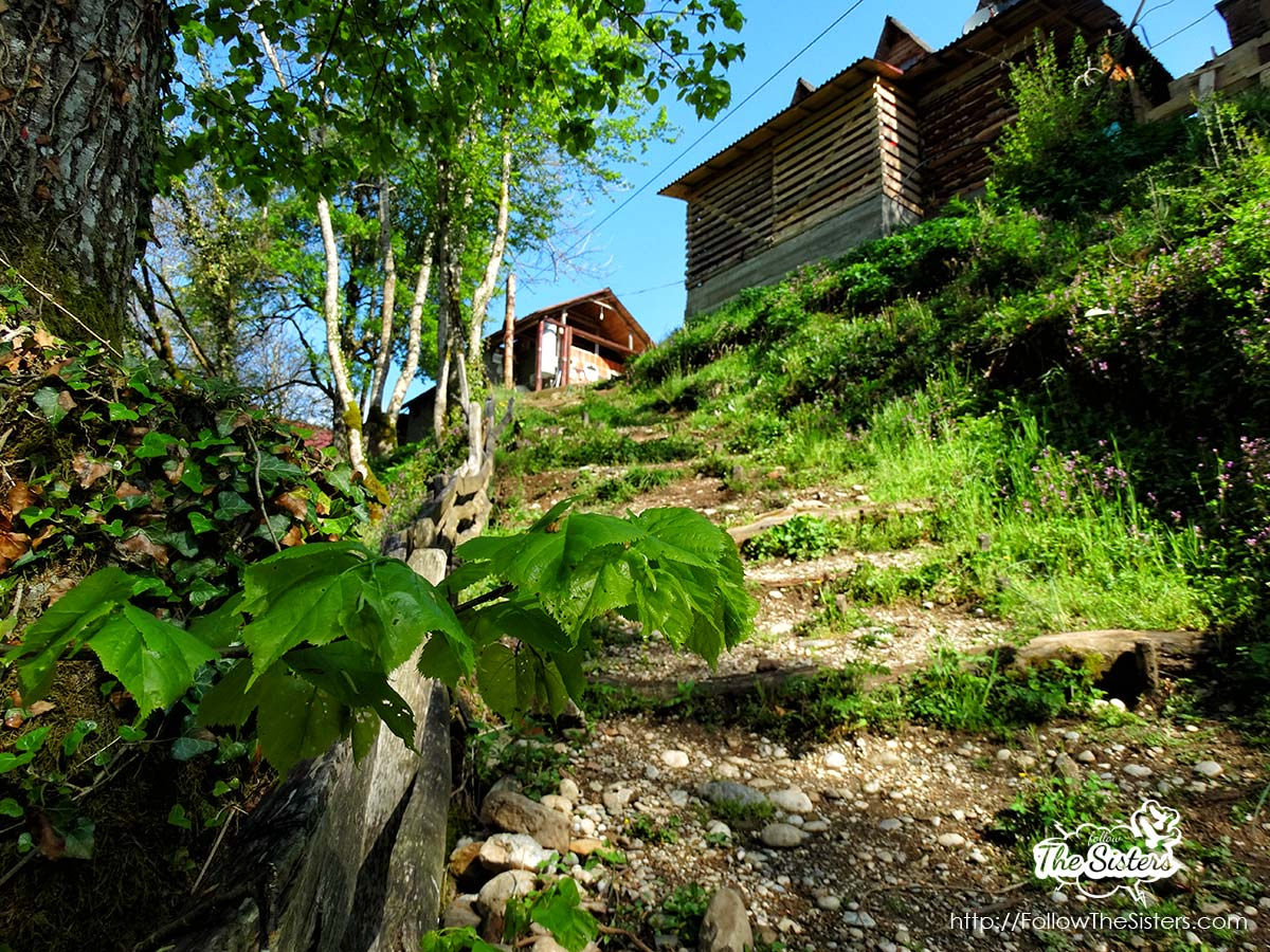 The path towards Drina-Tara Rafting Center
