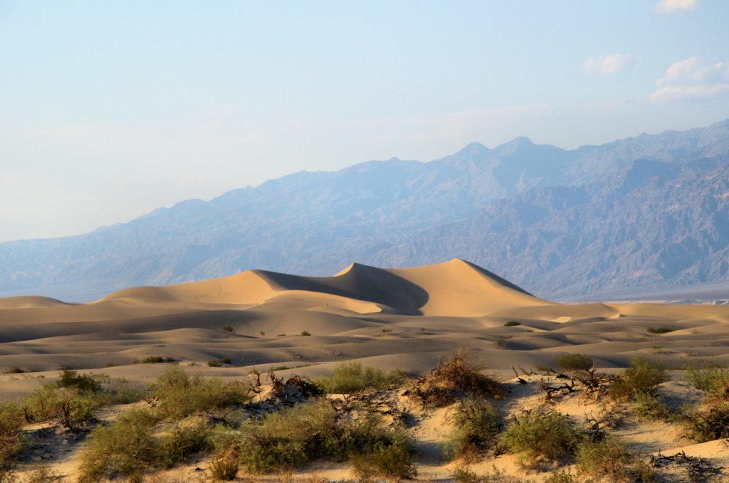Dolina Śmierci zwiedzanie - Mesquite Sand Dunes