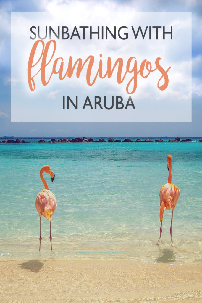 Flamingo beach at Renaissance island in Aruba is a bucket list place. Check on our blog where to see flamingos in Aruba.