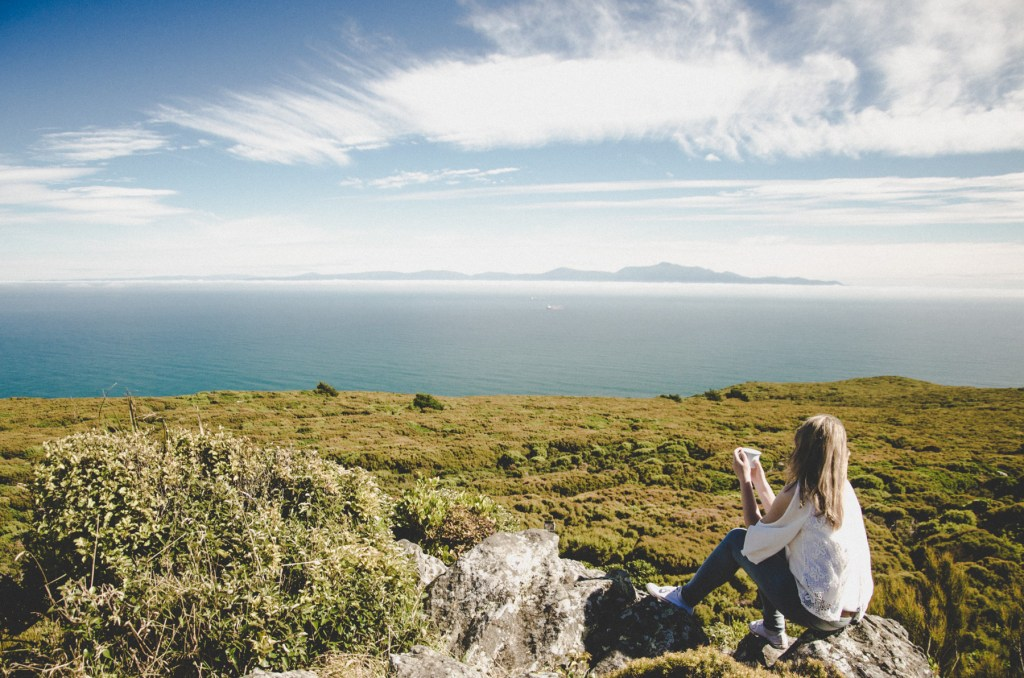 things to do in catlins - catlins attractions - stewart island