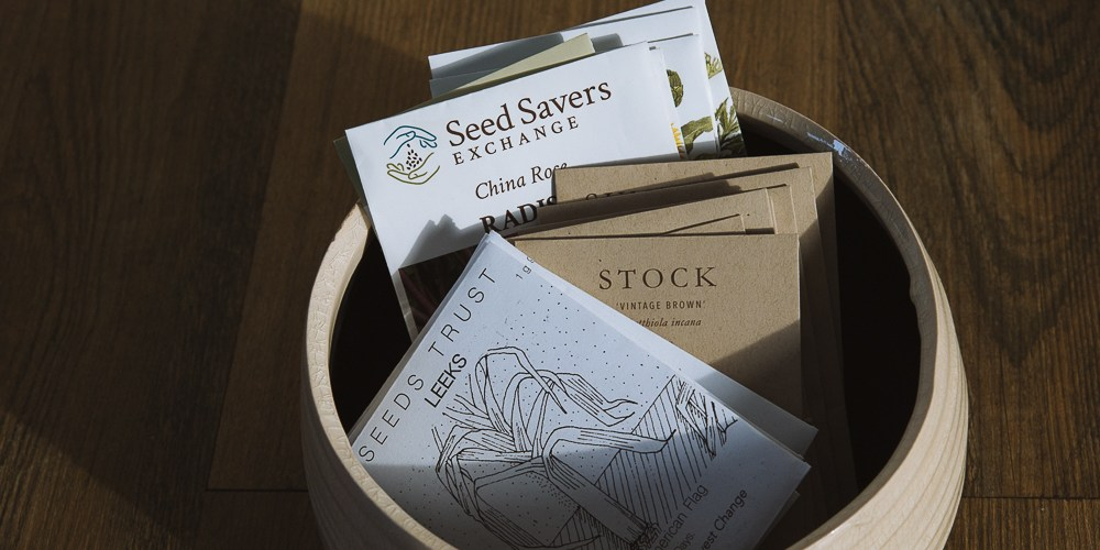 How To Buy The Right Kind of Seeds