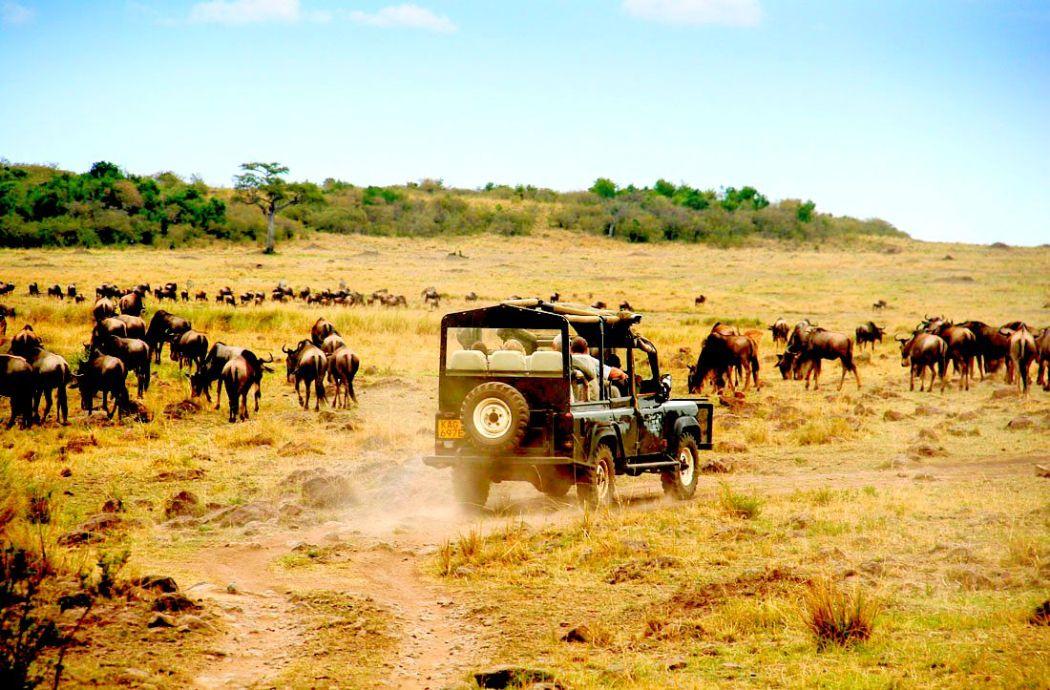 Elerbnis Afrika