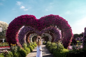 Dubai Miracle Garden Anreise, Eintritt, Highlights