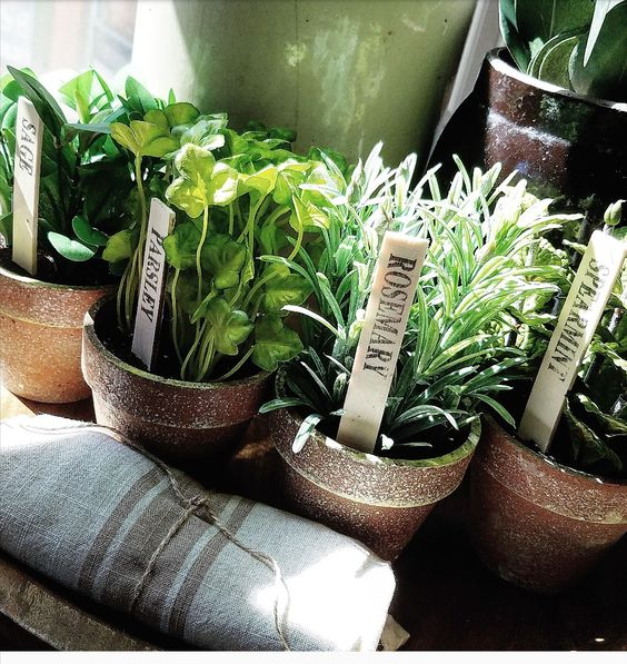 gorgeous faux herbs potted herbs french country farmhouse style A.C. Moore