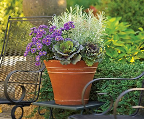 Beautiful mixed fall container garden from Lowes
