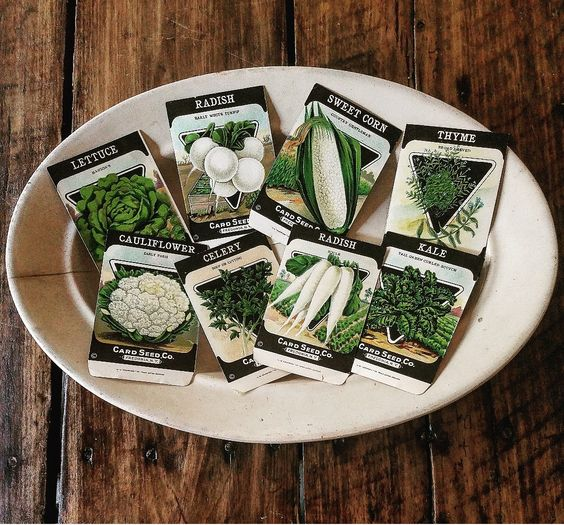 Vintage Seed Packets and ironstone platter