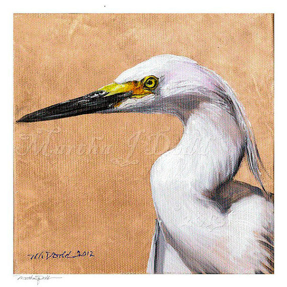 snowy egret original painting or Snowy Egret art prints
