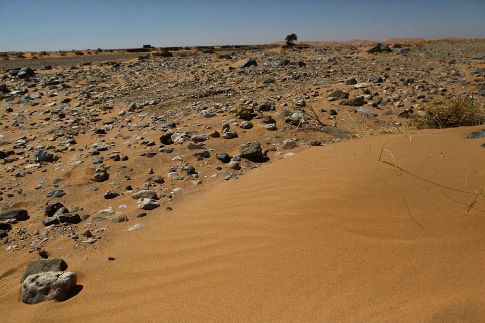 201505_MoroccoFossilHunting-0413